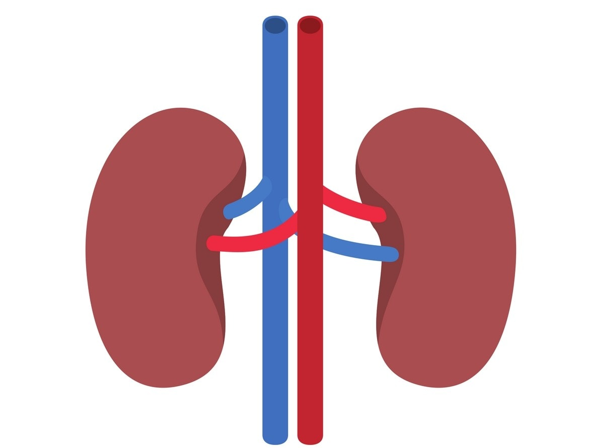 facts-about-kidney-failure-wisdom-care-transportation-1170x890.jpg