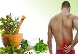 Ayur clinc ayurveda pain management